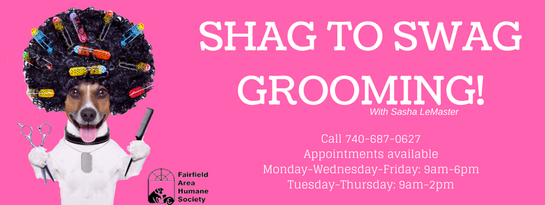 Shag to Swag pet grooming