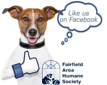 facebook - Fairfield Area Humane Society