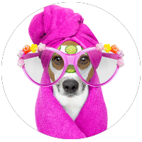 dog wearing glasses and head wrapped in pink towel